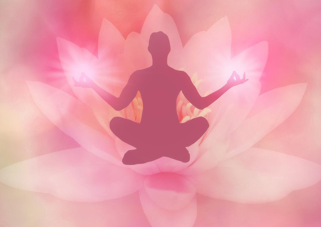 lotus, meditation, lotus position
